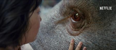 'Okja', teaser tráiler de la nueva película de Bong Joon-ho con un monstruo gigante
