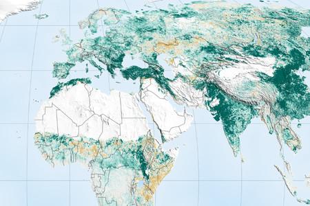 El mundo hoy es un lugar más verde que hace veinte años. Este mapa muestra hasta qué punto