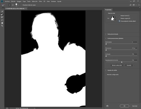 Nuevo Adobe Viii