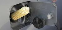 Un importante paso hacia biocombustibles eficaces