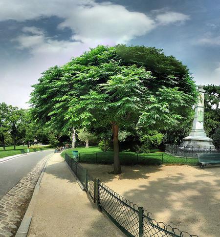 Jardines de París