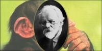 Seis experimentos científicios carentes de ética: hombre mono, sexo y drogas, cadáveres electrocutados...