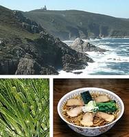 Las algas en Galicia, la verdura del Océano Atlántico