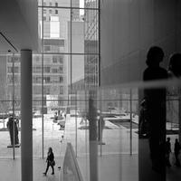 Grandes museos: el MoMa en Nueva York