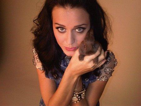Katy Perry te da un pastelazo en la jeta por su cumple