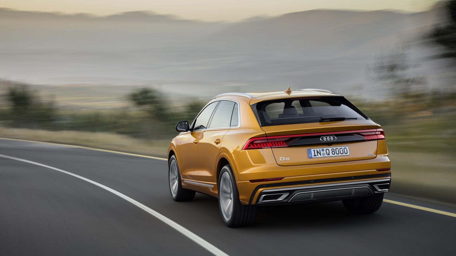 Foto de Audi Q8 2019 (29/33)