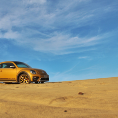 Foto 22 de 25 de la galería volkswagen-beetle-dune en Usedpickuptrucksforsale