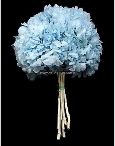Flores preservadas en azul