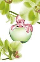 Love, el nuevo perfume de Nina Ricci