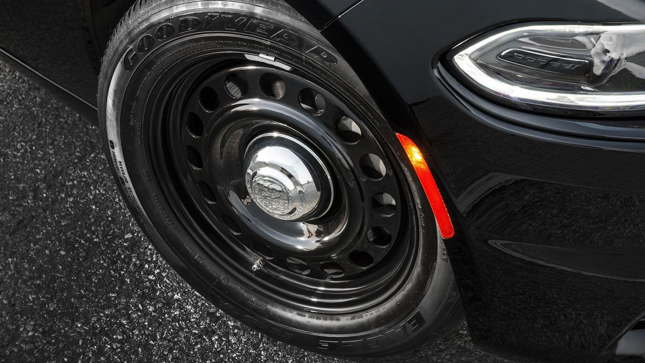 Foto de Dodge Charger Pursuit California HP (16/20)
