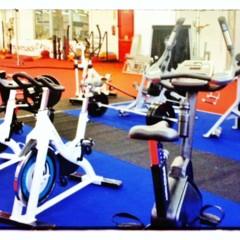 Foto 11 de 24 de la galería fibo-2013-nuevo-equipamiento-para-el-gimnasio en Vitónica