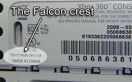 falcon_find.jpg