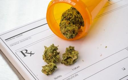 CBD, uno de los componentes de la marihuana podría ser considerado suplemento alimenticio en México