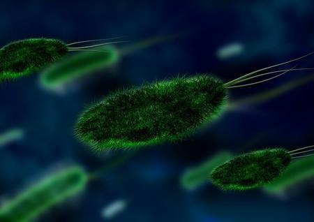 Bacteria 106583 960 720