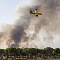 Bocadillos y bebidas solidarias para los bomberos que luchaban contra el fuego de Doñana