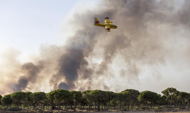 Incendio Forestal Donana