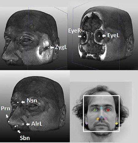 Mapa facial genético: cinco tipos de genes determinan la forma de tu cara