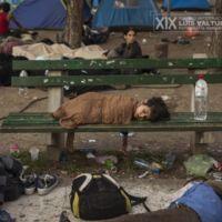 Olmo Calvo gana Premio Internacional de Fotografía Humanitaria Luis Valtueña 2015
