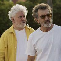'Dolor y gloria' nominada al Oscar: Pedro Almodóvar puede conseguir el premio para España 15 años después de 'Mar adentro'