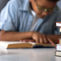 Clases particulares a 400$ la hora para niños de 4 años: la locura del Harvard infantil en EEUU