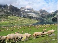 India abre rutas hasta hoy restringidas en Cachemira