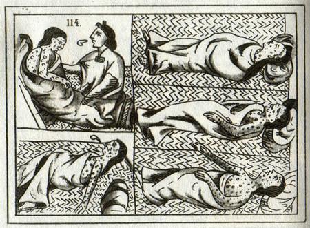 Vir 3 Codice Florentino