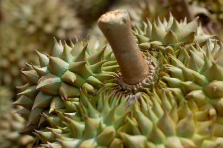 Descubre las 11 frutas más curiosas del planeta