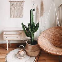 Cinco maceteros de mimbre ideales para crear un ambiente bohemio a nuestra casa