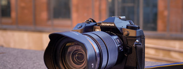 Olympus OM-D E-M1X, análisis: la Micro Cuatro Tercios más completa que asalta el territorio de las cámaras profesionales
