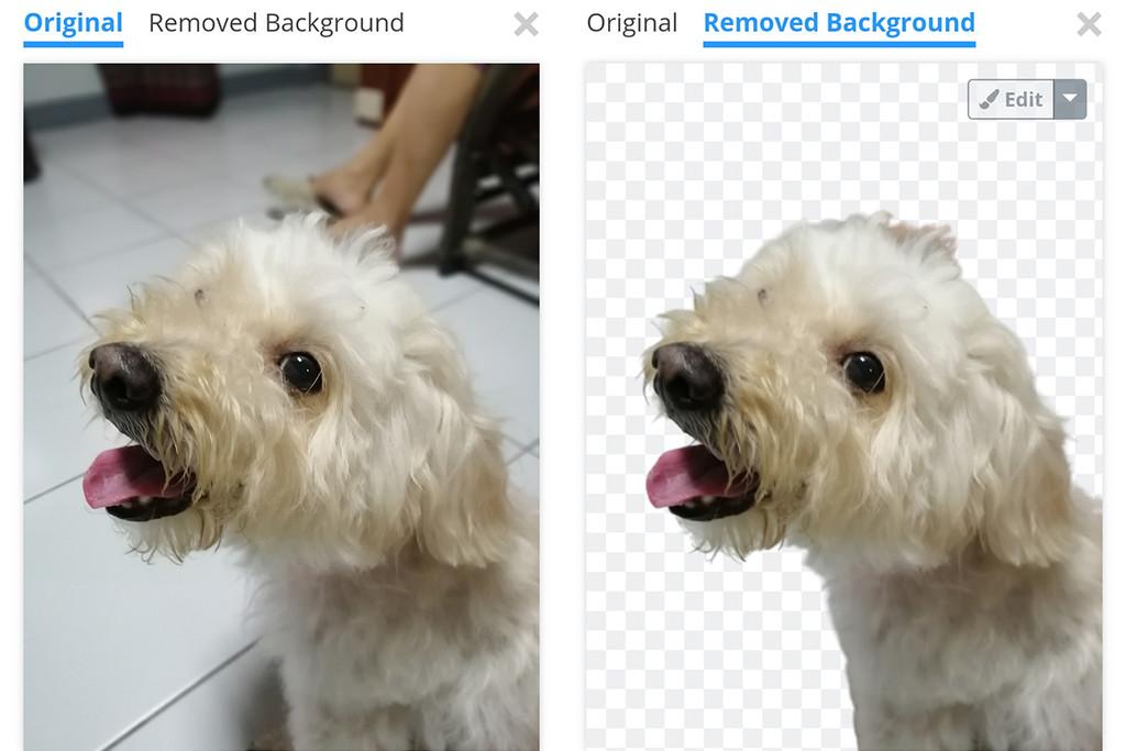 Cómo borrar el fondo de alguna fotografía sencillo y gratuitas con Remove.bg para Android