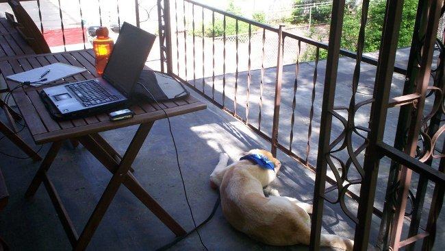 Interrupciones y falta de concentración principales problemas de trabajar en casa