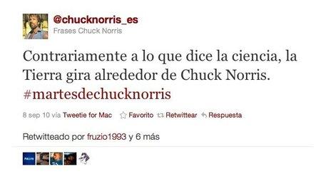 chuck norris fake