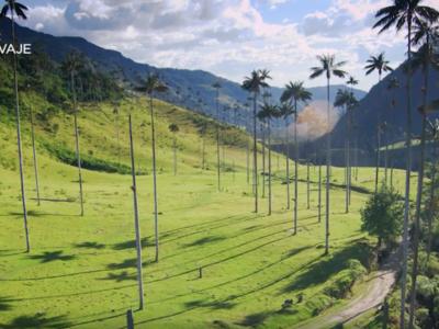 ¿Pasarás el 20 de julio en casa? Estas son las películas colombianas que no puedes dejar de ver en Netflix