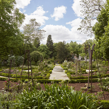 La renovada ruta de las rosas del Real Jardín Botánico, el planazo del verano en Madrid