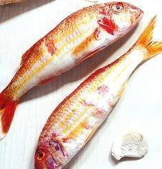 Salmonete, un clásico del mediterráneo