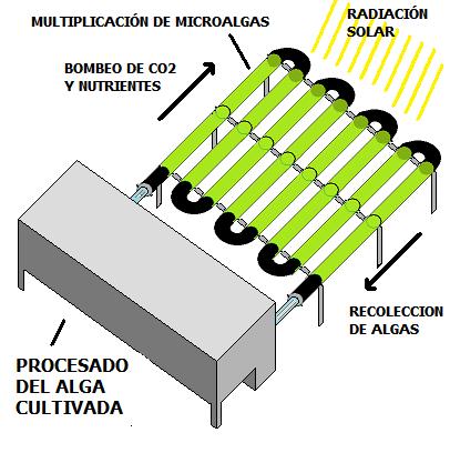 Esquema fotobioreactor