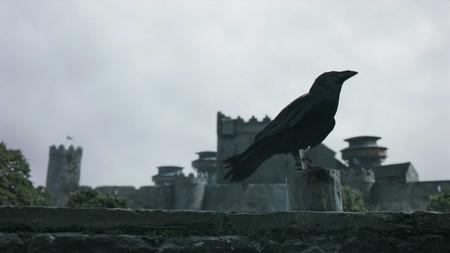 Raven 1x10