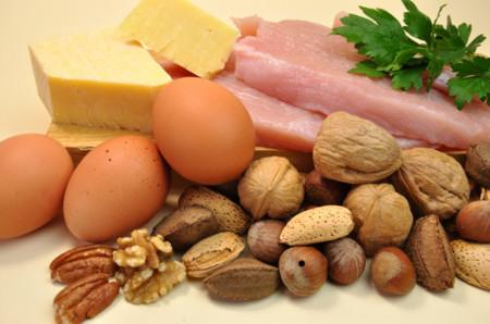 comparacion de proteinas vegetales y animales