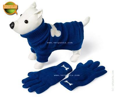 Suéter para tu perro, guantes para ti