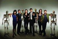 FOX prepara un spin-off de 'Bones'