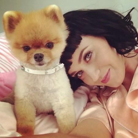 ¡Katy Perry y John Mayer lo dejan!