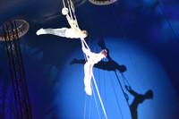 Las decisiones empresariales no se toman en el circo