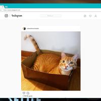 Con este pequeño truco puedes publicar fotos en Instagram desde Chrome para Windows, Linux o Mac