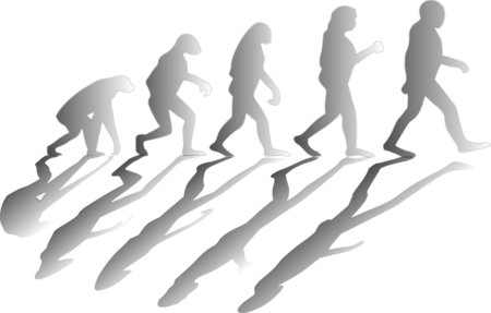 Evolution 1295256 960 720