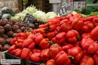 ¿Qué es el crudivorismo o el raw food?