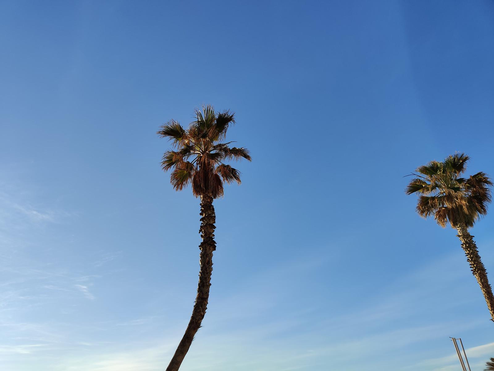 Foto de OnePlus 7 Pro (49/67)