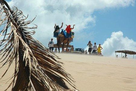 Andalusia Travelcard, una tarjeta de descuento para turistas