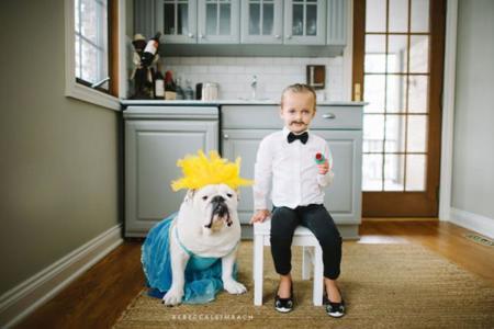 los nuevos retratos de familia son con tu querida mascota