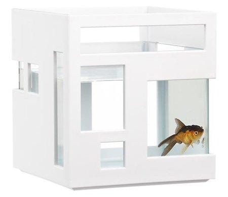 Tu pez como en un hotel