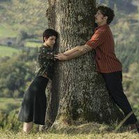 El anodino tráiler de 'El árbol de la sangre' hace un flaco favor a la nueva película de Julio Medem